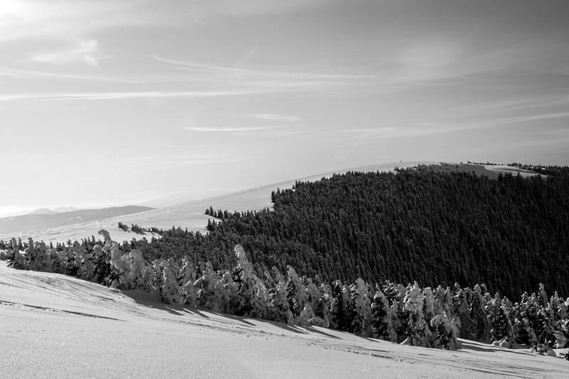 Blick von der Peter Berger Warte / Pretul, Fischbacher Alpen / © Oliver Königshofer